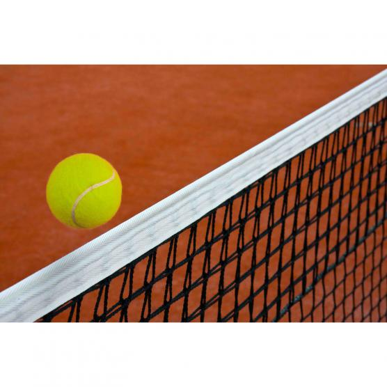 RIBOLA Tennis Net Professional