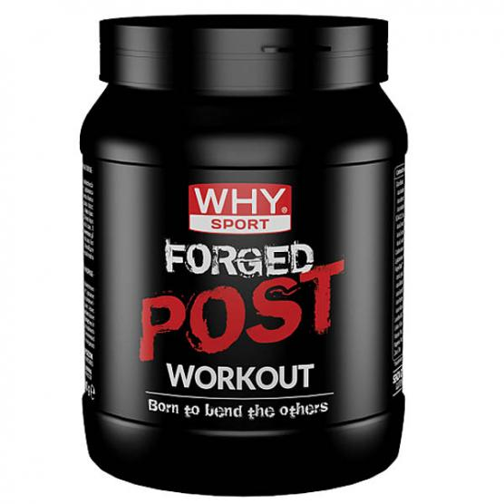 WHY SPORT Forged Post Workout