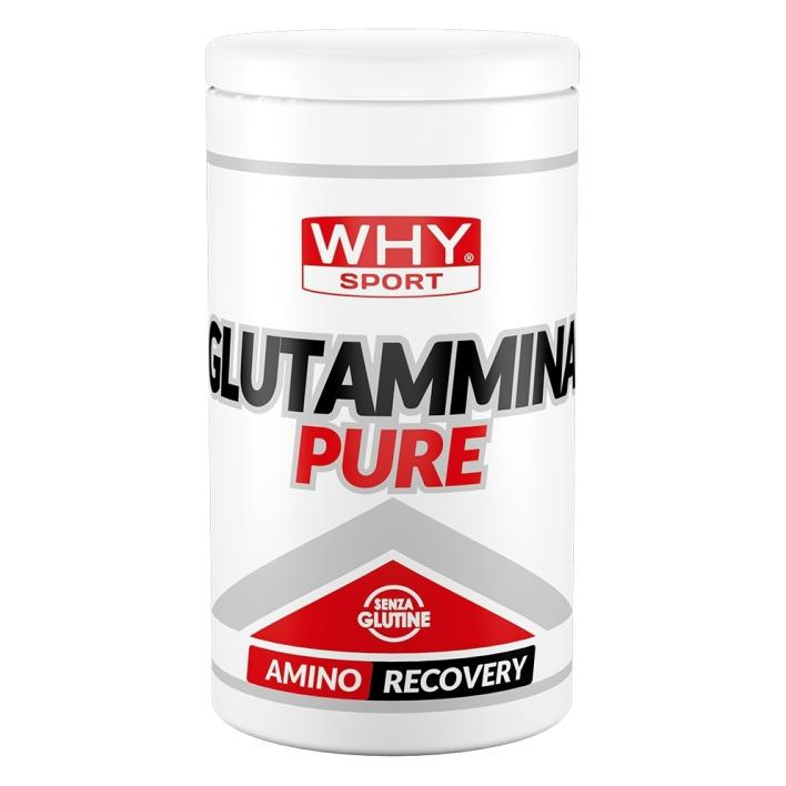 why sport GLUTAMMINA PURE 500G