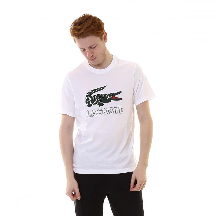 LACOSTE TEE-SHIRTS