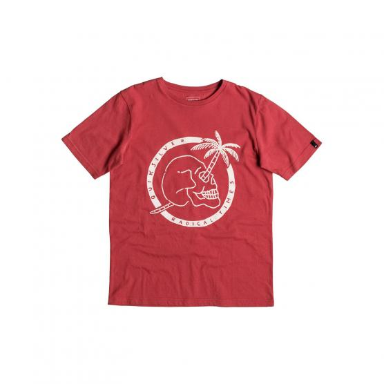 QUIKSILVER SS CLASSIC TEE YOUTH PALM SKULL RPE0