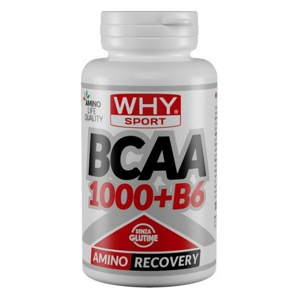 WHY SPORT BCAA1000 + B6 100cpr